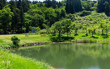 Nagaokaぶくぶく発酵めぐり 社々の森名水公園